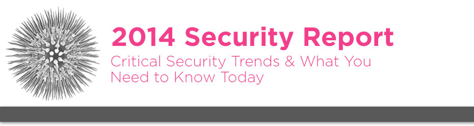 2014-security-report-banner