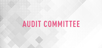 Corporate Governance Audit Committee