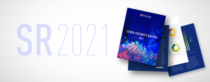 Cyber Security Report 2021 spotlight image