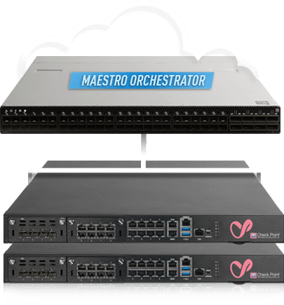 Maestro Hyperscale Network Security Appliances Image
