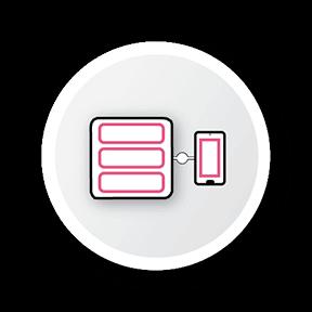 Zero Trust Icon Networks